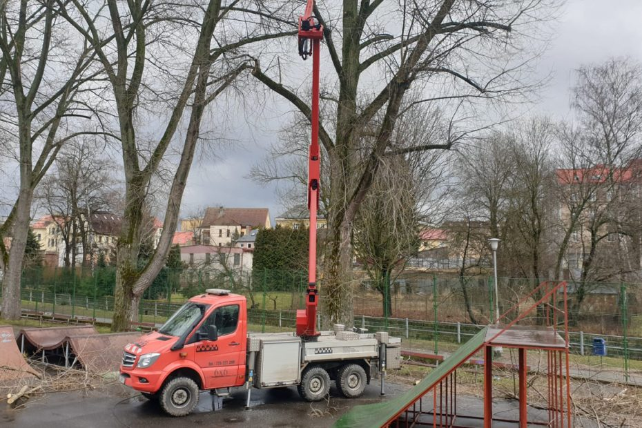 kácení stromů z plošiny